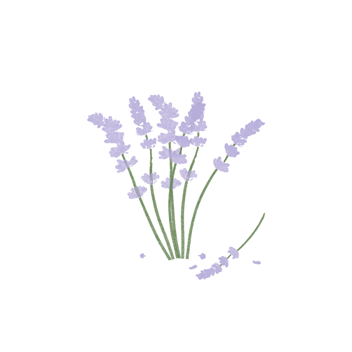 Picture for Lavender